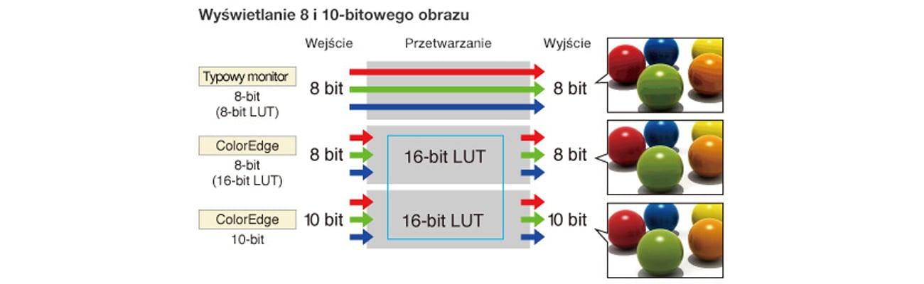 Eizo CG2420-BK Jednoczesne wyświetlanie kolorów z palety 10-bitowej