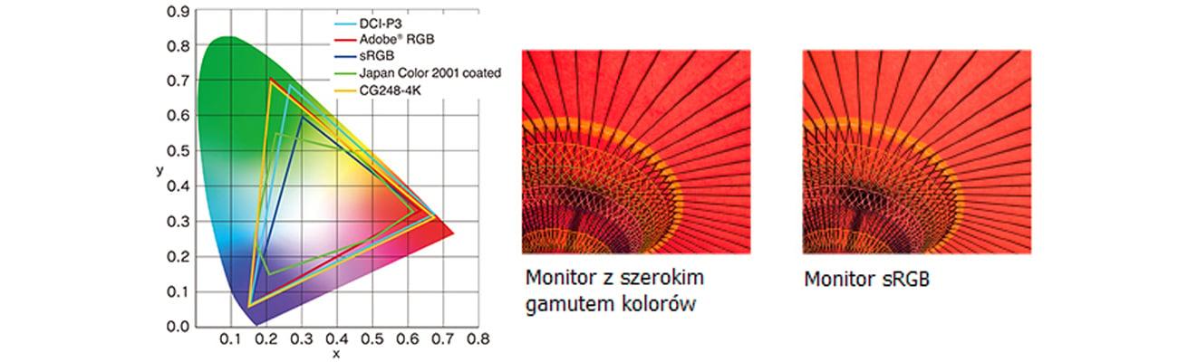 Eizo CG248-BK 4K Odwzorowanie 99% przestrzeni barw Adobe RGB