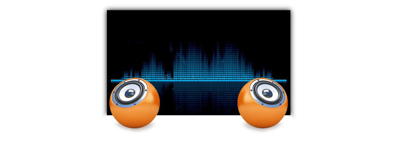iiyama B2480HS Wbudowane głośniki