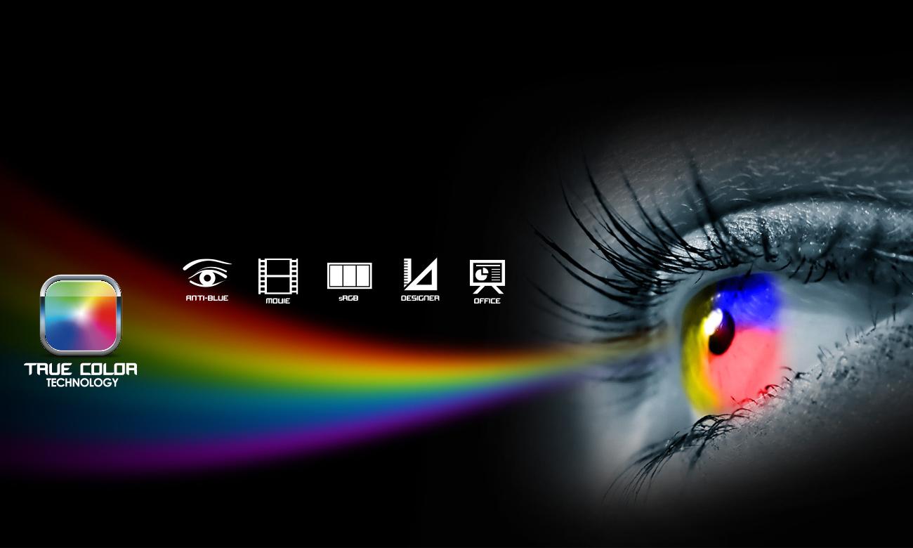 MSI GS40 6QD IPS True Color