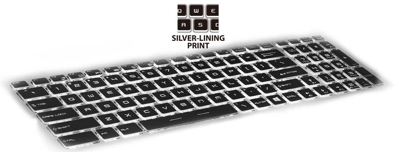 MSI PE60 6QE steelseries, silver lining print