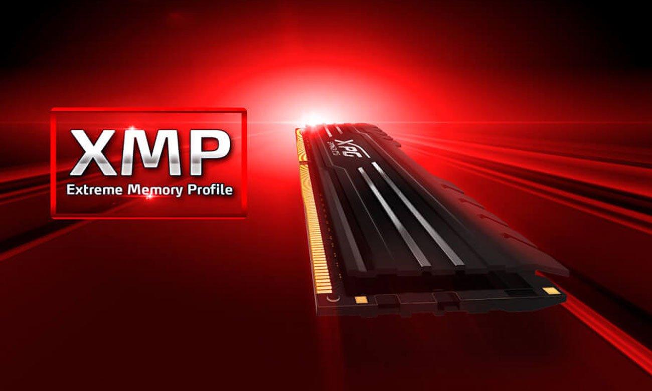 Moduł pamięci RAM DDR4 XPG GAMMIX D10 Łatwe podkręcanie Intel XMP 2.0