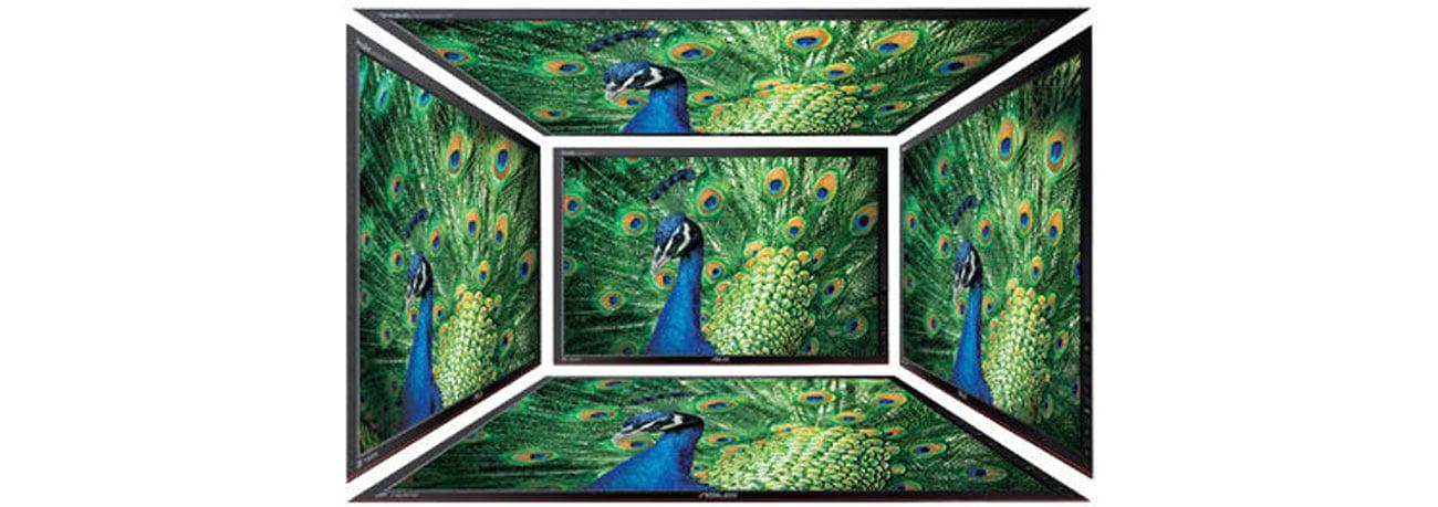 ASUS MX239H zywy realistyczny obraz