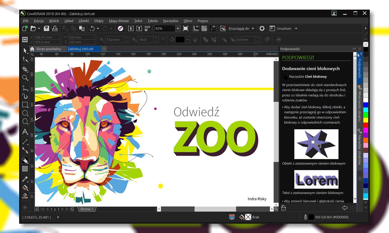 CorelDRAW Graphics Suite 2018 Small Business Kreatywność