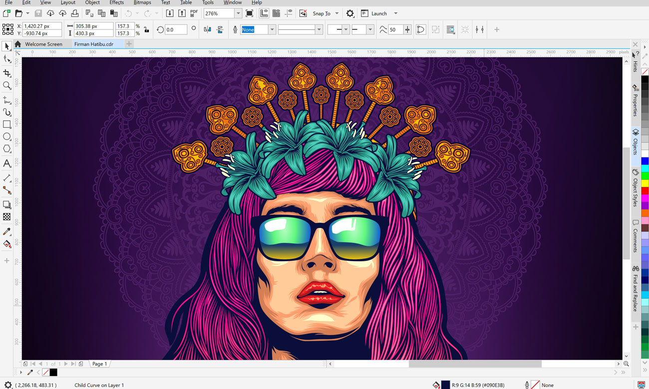 Corel Graphics Suite 2020
