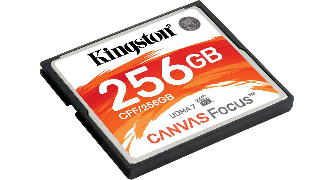 Kingston Canvas Focus