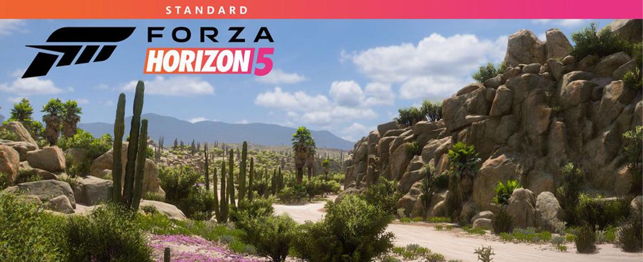 Gra Forza Horizon 5 na Xbox One i Xbox Series X