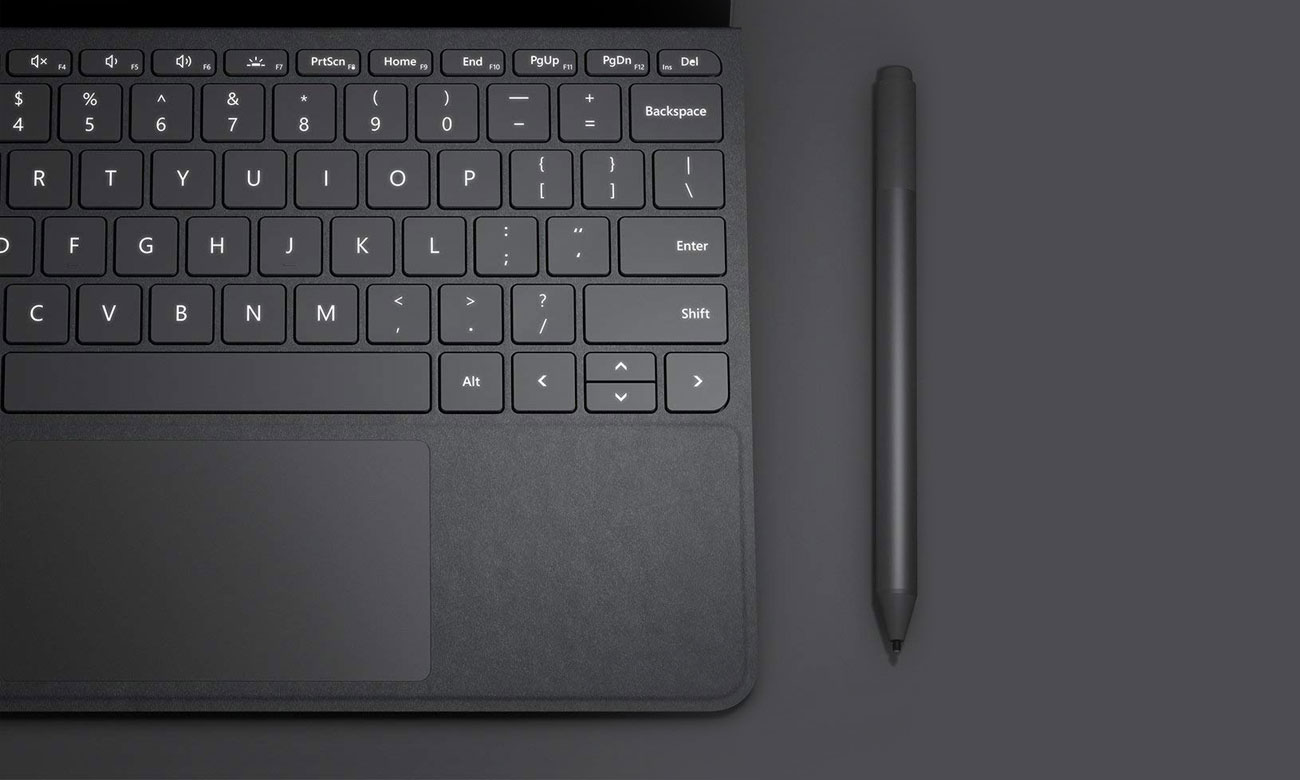 Signature Type Cover do Surface Go Platynowa