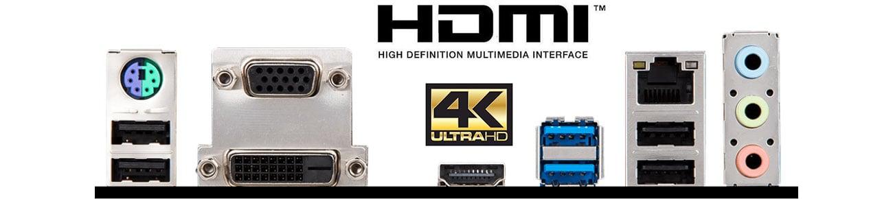 MSI H310M PRO-VDH PLUS Złącza wideo, 4K