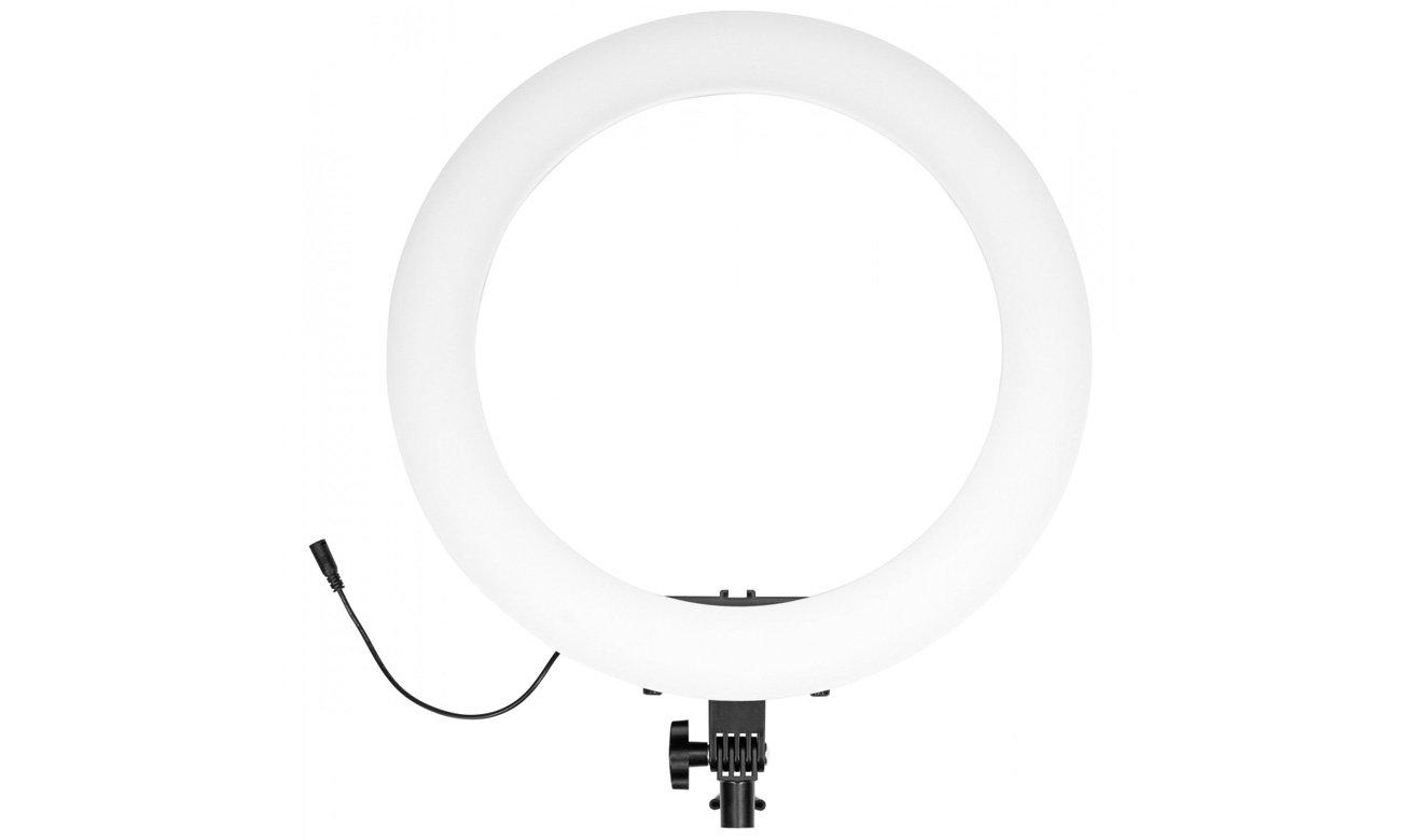 Lampa pierścieniowa LED Newell RL-18A WB