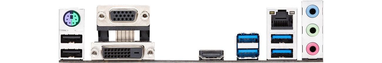 ASUS PRIME B365-PLUS - Złącza