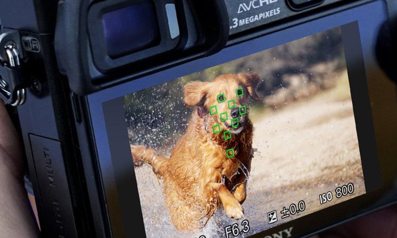 Sony ILCE-6000 + 16-50 mm Hybrydowy Autofocus